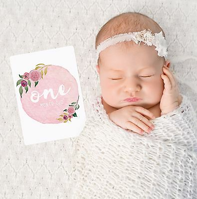 Floral Girls Baby Milestone Cards. Monthly Pack 13 Cards. Brand New & Sealed