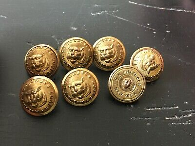 Lot Of 7 Albany Burgesses Corps Post Civil War Staff Buttons