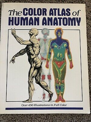 The Color Atlas Of Human Anatomy Over 450 Illustrations In Full Color
