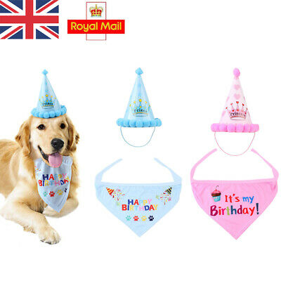 Birthday Hat Cat Dog Headwear Bandana Fancy Dress Neckerchief Ties Party Decor