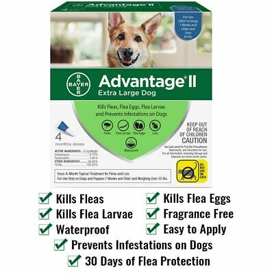 Bayer Advantage II for Extra Large Dogs Over 55 lbs - 4 Pack - FREE Shipping