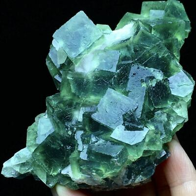 299g Translucent Green/Blue Cubic Window Fluorite Crystal & Flake Calcite/China
