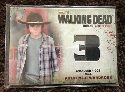 Walking dead Carl Authentic Relic card