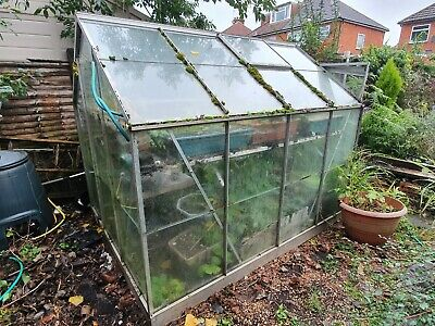 x QTY 20 2ft x 2ft HORTICULTURAL  610 MM x 610 MM GREENHOUSE GLASS