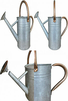 Galvanized Metal Watering Can 1 Gallon Water Capacity With Shower Spout 24 95 Picclick