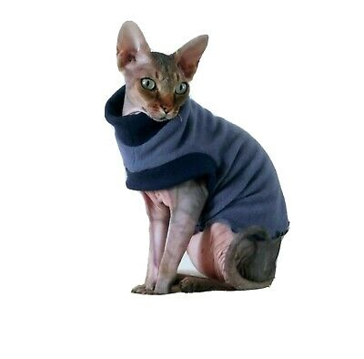 CHOOSe YOUR COLOUR, stretchy clothes for a Sphynx cat, SPHYNX cat clothes