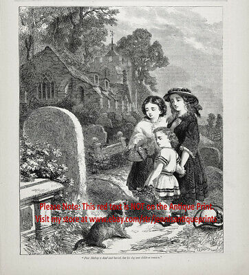 Dog Border Terrier Mourns Death at Grave of Owner, 1870s Antique Engraving Print