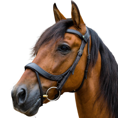 p Ecorider Ecolux Anatomical Comfort Leather Snaffle Bridle black//brown