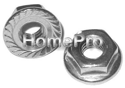 1/2-13 Stainless Serrated Hex Flange Nuts Trim Fender