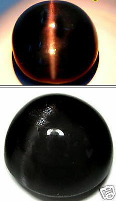 100% Natural Cats-eye Black Scapolite Cabochon 9.95Ct