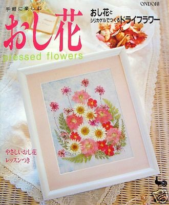 Enjoy Pressed Flowers /Japanese Craft Pattern Book/509