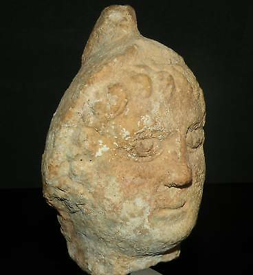 Aphrodite- Ancient Roman Head Of A Page