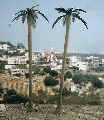 Verlinden 1/72 Palm Trees (2 Pieces) [Resin & Photo-etch Diorama Accessory] 2095