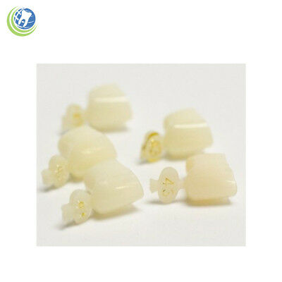 Dental Polycarbonate Temporary Crowns #43 First (1St) Bicuspids Small 5/Pack