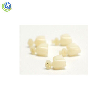 Dental Polycarbonate Temporary Crowns #44 First (1St) Bicuspids Small 5/pack