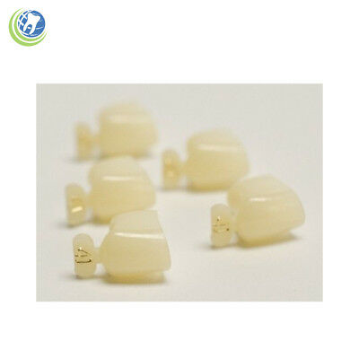 Dental Polycarbonate Temporary Crowns #41 First (1St) Bicuspids Small 5/pack