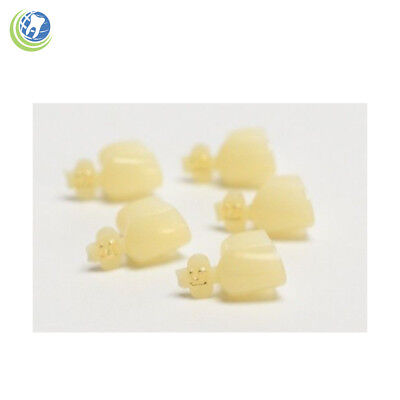 Dental Polycarbonate Temporary Crowns #51 Second (2Nd) Bicuspids Large 5/pack
