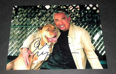 "Cesar Millan Pp Signed 10""x8"" Photo Dog Whisperer"