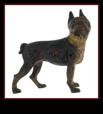 Rare Antique Hubley Painted Cast Iron Boston Bull Dog Terrier