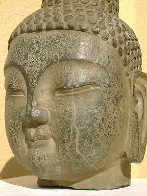 Divine Chinese Tibetan antique carved stone Buddha head, great patina, 12 lb.