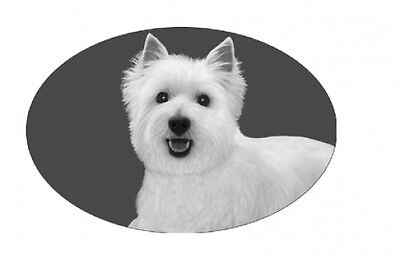 "4""X6 WESTIE static cling etched glass window decal, REMOVABLE, great in your car"