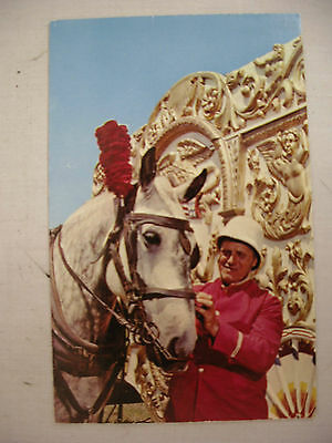 Vintage Postcard Horse And Trainer Circus World Museum Baraboo Wisconsin