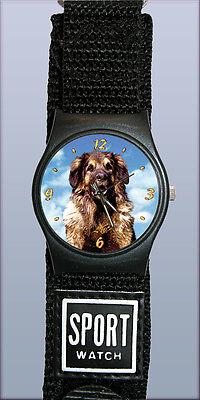 Montre Sport Chien LEONBERG - Watch LEONBERGER DOG