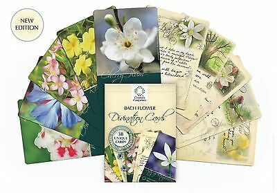 Bach Flower Divination Cards pack free pen 38 Beautiful illustrations + Proverbs