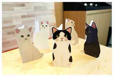 Birthday Card for the cat Person So adorable Kittens Wish Cards NEW