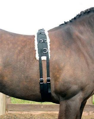 NEW! High Quality Equestrian Training Roller