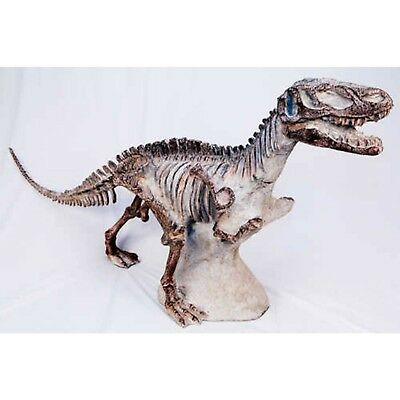 Ex-Large Dinosaur Skeleton 1.3M T-Rex Raptor Resin Animal Sculpture Model