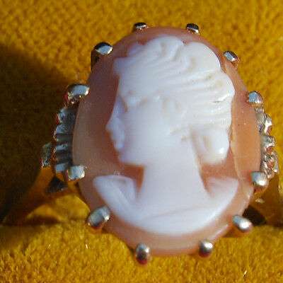 Shell Cameo Ring - Size 6 1/2 - 14K Yellow Gold