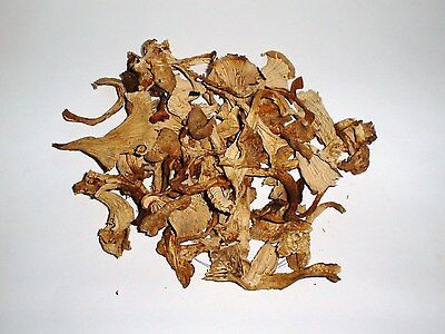 Chanterelle Mushroom, Dry     4 oz. Bag    ****New Item****