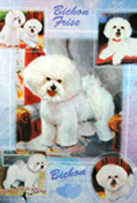 Bichon Frise Gift Wrapping Paper