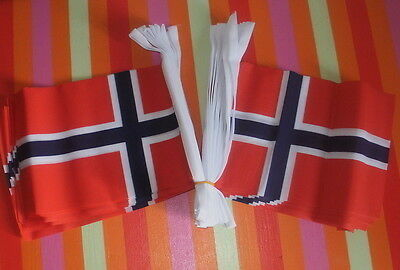 Norway Bunting 9m Alt for Norge Oslo Trondheim Viking Norse Nordic Bergen bnip
