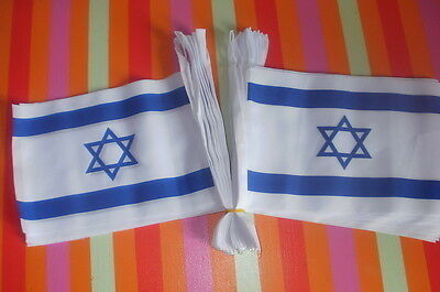 Israeli Patriot Bunting 9 metre long Jewish Holocaust Memorial Jews IDF Shoah bn