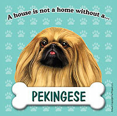 Pekingese Dog Magnet Sign House Is Not A Home