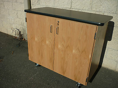 Diversified Woodcrafts Mobile Microscope Science Lab Cabinet 4701K
