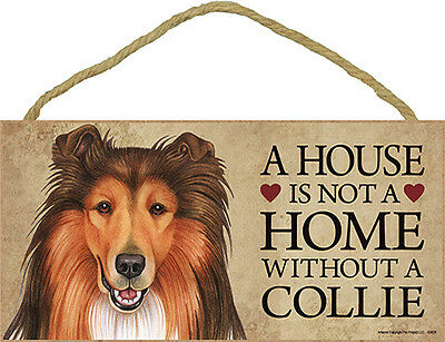 Collie Wood Dog Sign Wall Plaque Photo Display 5 x 10