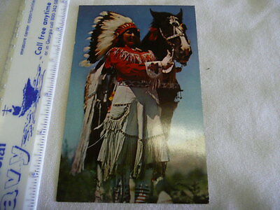 Indian Madien In Full Dress  Post Card