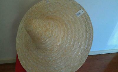 54Cm Plain Mexican Sombrero Hat With Beige Colour
