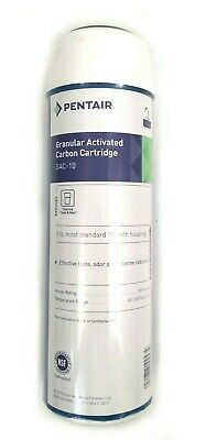 Pentek GAC-10 Granular Activated Carbon Filter Cartridge