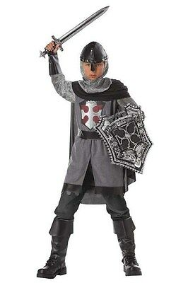 Dragon Slayer Medieval Knight Child Halloween Costume