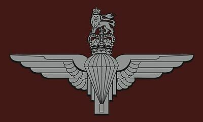 PARACHUTE REGIMENT FLAG British Army Infantry the Paras Armed Forces Day