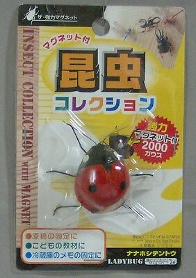 Collectible Ladybug Insect Collection With Magnet New In Factory Plastic