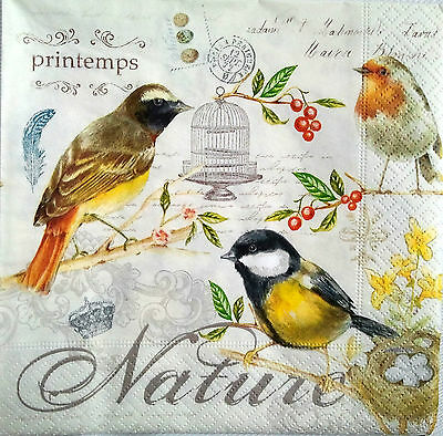 4 x Single Vintage Table Paper Napkins  for Decoupage or Party - BIRDS