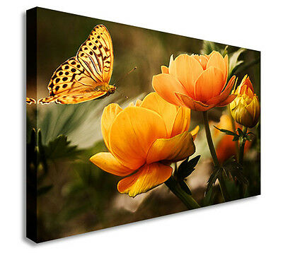 Butterfly Yorkshire Rose Yellow Flower Wall Picture Canvas Art Cheap Print