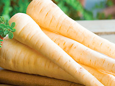 Parsnip Seeds Hollow Crown (Approx 150 Seeds)
