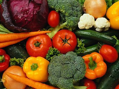 Mixed Vegetable Seeds 8 Packs