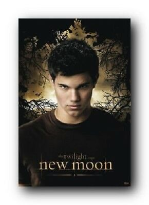 TWILIGHT SAGA NEW MOON JACOB TAYLOR LAUTNER NEW MOVIE POSTER 22x34 FREE  SHIPPING b65d65036b30
